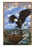 Eagle and Chicks - Wyoming ポスター : ランターン・プレス
