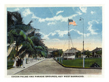 Key West, Florida - Key West Barracks Cocoa Palms and Parade Grounds Affiches par Lantern Press