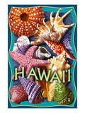 Hawaii - Shells Montage Print by  Lantern Press