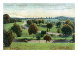 Syracuse, New York - View of Burnet Park Posters by  Lantern Press