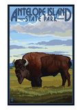 Antelope Island State Park, Utah - Bison and Field Prints by  Lantern Press