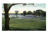 Chautauqua Lake, New York - View of Sylvan Park Prints by  Lantern Press