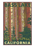 Bass Lake, California - Forest View Posters by  Lantern Press