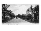 Palm Beach, Florida - View Down the Boulevard Art by  Lantern Press