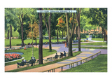 Saratoga Springs, New York - Scenic View in City Park Poster by  Lantern Press