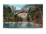Philadelphia, Pennsylvania - Walnut Lane Bridge over Wissahickon River Art by  Lantern Press