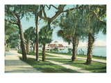 Daytona Beach, Florida - Yacht Club View Through Palm Trees Prints by Lantern Press