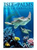 Isle of Palms, South Carolina - Sea Turtles Prints by  Lantern Press