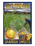 Vale, Oregon - Spanish Sweets Onion Harvest Art by  Lantern Press