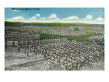 Camp Life - Aerial View of Soldiers in Formation Marching Print by  Lantern Press