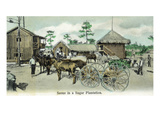 Florida - Sugar Plantation Scene Prints by  Lantern Press
