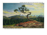 Rocky Mt. Nat'l Park, Colorado - High Drive Lonesome Pine View of Long's Peak Poster von  Lantern Press