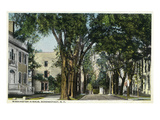 Schenectady, New York - Washington Avenue View Prints by  Lantern Press