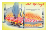 Hot Springs Nat'l Park, Arkansas - View of a Hot Springs Bed Poster by  Lantern Press
