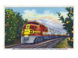 California - View of a Santa Fe Train Passing Through Orange Groves Print by  Lantern Press