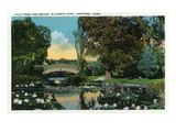 Hartford, Connecticut - Elizabeth Park Lily Pond and Bridge Posters by Lantern Press 