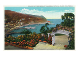 Santa Catalina Island, California - Avalon Bay View from Wrigley's Gardens Posters by Lantern Press