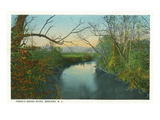 Brevard, North Carolina - French Broad River Scene Posters by  Lantern Press