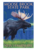 Moose Brook State Park - Moose at Night Poster by Lantern Press