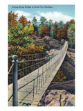 Lookout Mountain, Tennessee - View of Rock City Gardens Swing-Along Bridge Art by  Lantern Press