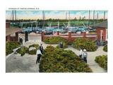 Tarpon Springs, Florida - View of Sponges at Wharf Posters by  Lantern Press
