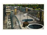 Cleveland, Ohio - Brookside Park Zoo Bear Pit Scene Posters by  Lantern Press