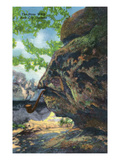 Lookout Mountain, Tennessee - Rock City Gardens, View of the Stone Witch Prints by  Lantern Press