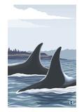Orca Whale Fins Plakaty autor Lantern Press