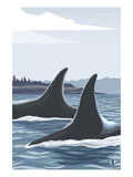 Orca Whale Fins Posters by  Lantern Press