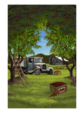 Cherry Orchard Harvest Poster von  Lantern Press