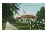 Pasadena, California - Scenic View Down Orange Grove Avenue Prints by  Lantern Press