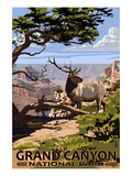 Grand Canyon National Park - Elk and South Rim Poster by  Lantern Press