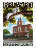 Brevard, North Carolina - Courthouse and White Squirrel Premium Giclee-trykk av  Lantern Press