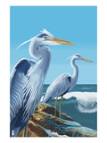Blue Herons - West Coast Prints by  Lantern Press