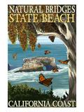 Natural Bridges State Beach, California Coast Art by  Lantern Press