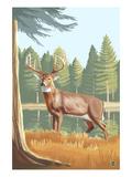 White Tailed Deer Print by  Lantern Press
