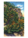 Lookout Mountain, Tennessee - View of Roper&#39;s Rock Print by Lantern Press 