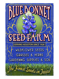 Texas Blue Bonnet Farm Poster by Lantern Press