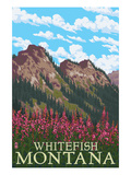 Whitefish, Montana - Fireweed and Mountains Posters by  Lantern Press