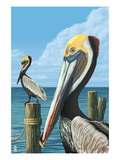 Brown Pelican Print by  Lantern Press