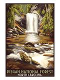Pisgah National Forest - North Carolina Stampa di  Lantern Press