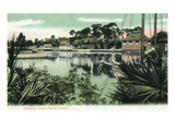 Tarpon Springs, Florida - View from the Water Posters by  Lantern Press