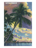 Florida - View of a Palm During Sunset Kunstdruck von  Lantern Press