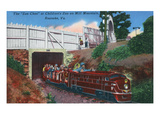 Roanoke, Virginia - Mill Mountain Children's Zoo Train the Zoo Choo Art by Lantern Press