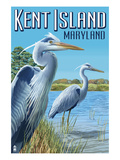 Blue Heron - Kent Island, Maryland Prints by  Lantern Press