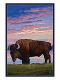 Bison and Sunset Print by  Lantern Press
