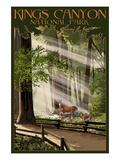 Lantern Press - Kings Canyon National Park, California - Deer and Fawns Plakát