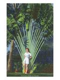 Florida - Woman Posing by Travelers Palm Prints by  Lantern Press