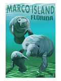 Marco Island, Florida - Manatees Affiches par Lantern Press 