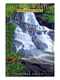 Laurel Falls - Great Smoky Mountains National Park, TN Prints by  Lantern Press